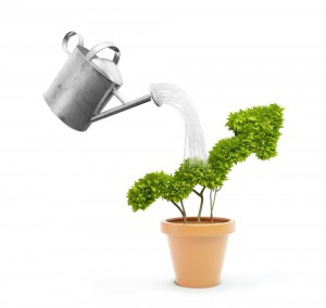 Vorteile beim passiven Einkommen